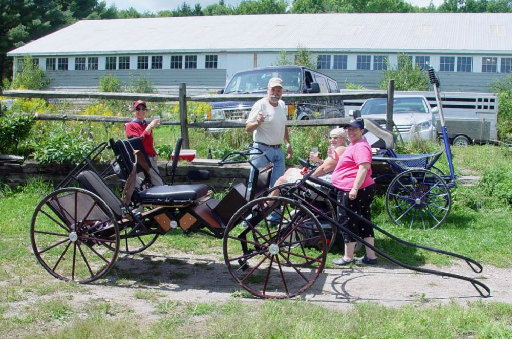 Carriages and Carts – United States Driving for the Disabled